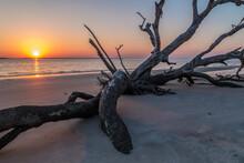 Sun Setting On Driftwood Beach
