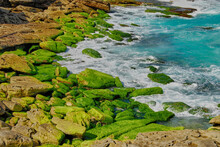Waves Washing Over Moss Covered Rocks At Tamarama Beach, New South Wales, Australia.