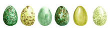 Watercolor Different Wild Birds' Eggs. Easter Egg. Green Birds Eggs Set