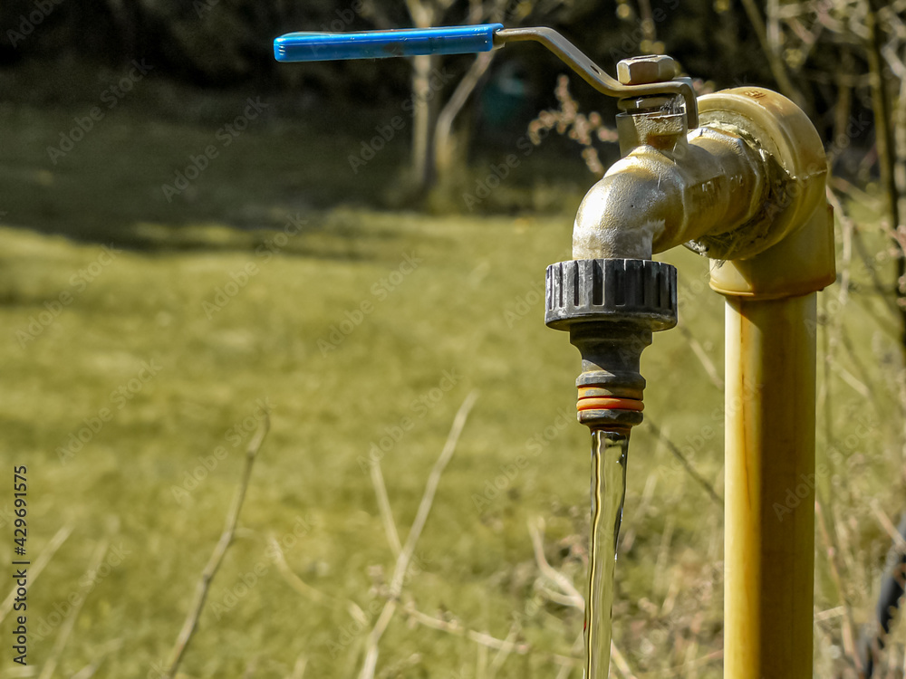 Fototapeta kran z wodą w ogrodzie w słoneczny dzień