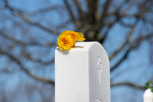 Single Golden Rose On A Grave In The Blue Sky Background