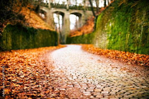 Obraz na plátně Ancient aqueduct across a ravine in autumn forest
