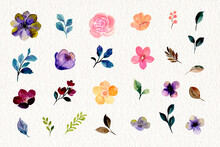 Watercolor Floral And Leaf Element Collection