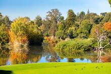 Picturesque Landscape In The Public Park - Queen Victoria Gardens, Melbourne, Australia