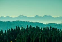 Górska Perspektywa