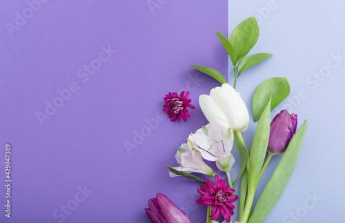 Fototapeta beautiful spring flowers on paper background obraz