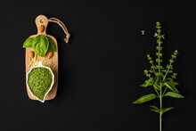 Basil Pesto Sauce In A Leaf-shaped Porcelain Bowl With Basil Leaves, Almonds And Parmesan Cheese On A Small Wooden Table And A Basil Twig With Its Tiny White Flowers On A Black Surface With Copy Space