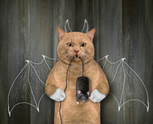 A Reddish Cat With A Black Computer Mouse In Its Teeth Stands By A Fence With Bat Wings And Horns Painted On It.
