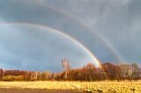 Fototapeta Tęcza - Wiosenna podwójna tęcza podczas deszczu