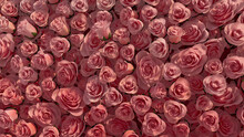 Beautiful, Red Wall Background With Roses. Elegant, Floral Wallpaper With Bright, Romantic Flowers. 3D Render