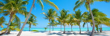 Panorama Of Idyllic Tropical Beach With Palm Trees, White Sand And Turquoise Blue Water