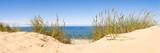 Fototapeta Paryż - Sand dunes panorama with beach grass