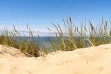 Fototapeta Paryż - Sand dunes on the beach