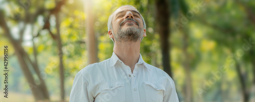 Smart handsome old man breathe pure air from tree and have good healthy in park - fototapety na wymiar