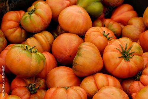 Fototapeta Tomates rojos frescos obraz