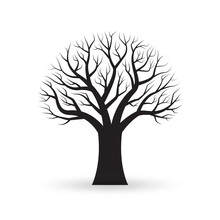Tree With Naked Branches. Autumn Or Winter Bare Tree Silhouette. Vector Illustration.