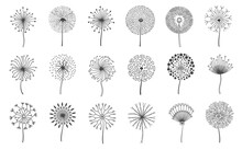 Dandelion Flowers. Fluffy Meadow Flower With Seeds. Summer Natural Floral Fluff Silhouette. Line Blossom Decorative Logo Elements Vector Set