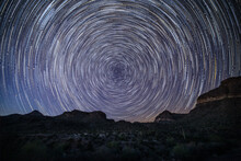 Star Trails Of Orga Pipe And Sagura National Park