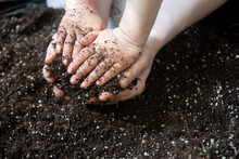 Little Girl And Her Mother Are Preparing Soil To Plant Ornamental Plants In Pots. Selective Focus Hands And Dirt