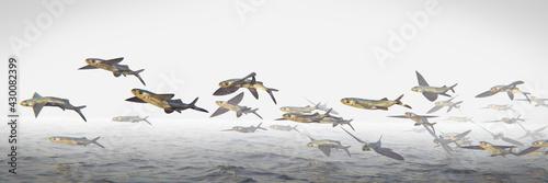 Fototapeta flying fish, school of Exocoetidae, background banner