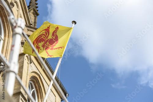 Foto Belgique Wallonie wallon coq drapeau region