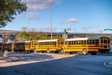 Row Of Yellow School Buses Parked Inline