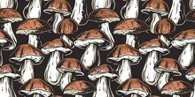 Mushroom Picking Of Porcini, King Bolete. Cep Mushrooms. Vegetarian Fungus Boletus For Food. Nature Fungi For Healthy Nutrition. Seamless Pattern