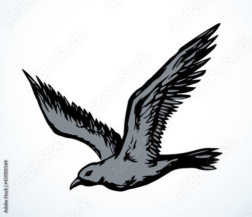 Fototapeta premium Bird in flight. Vector drawing