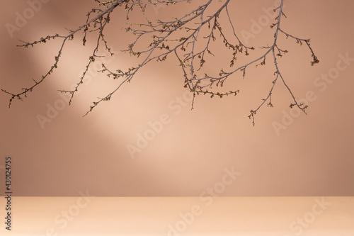 wiosenne tło baner reklamowy, słonce - fototapety na wymiar