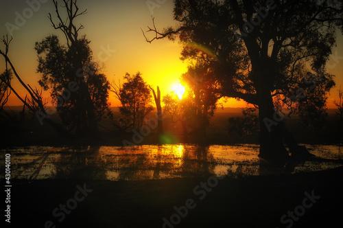 Fototapeta Marshland at Bamurru Plains