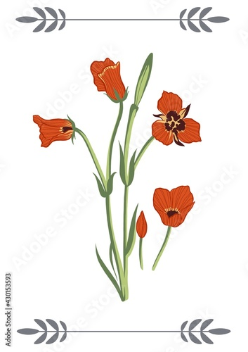 Digitally generated image of floral design and decorative flowers against white background
