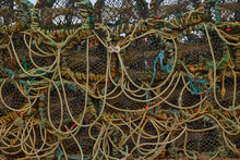 Close-up Of Lobster And Crab Pots On A Dock