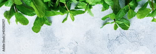 Fototapeta Bouquet of fresh mint leaves lying on old gray concrete background. Top view. Zero waste Concept obraz
