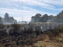 Incendio Forestal En Galicia Al Comienzo De La Primavera