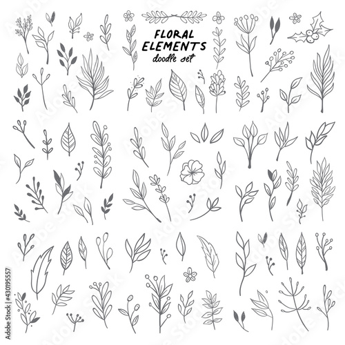 Flowers and leaves doodle collection. Hand drawn floral ornaments. Decorative plants illustrations. Fototapete