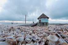 Close-up Of A Shell Beach On Holbox Island In Mexico, With The Old Wooden Pier On The Caribbean Sea. In The Background The Dramatic Cloudy Sky.