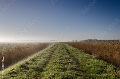 Photo MISTY RIVER VALLEY - A clear morning on the flood embankment