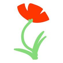 Single Poppy In Flower