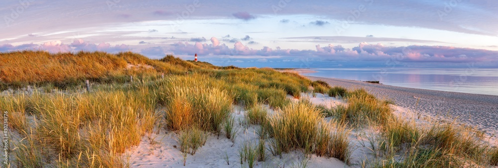 Dune landscape at the North Sea coast on Sylt, Schleswig-Holstein, Germany