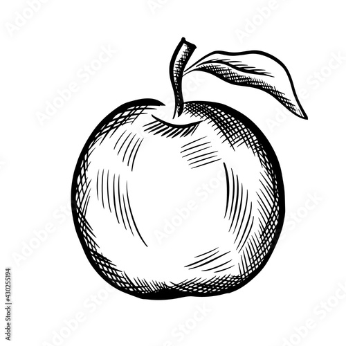 Canvas-taulu The apple object is hatching. Vector illustration