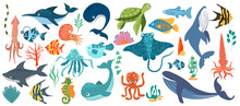 Fish And Wild Marine Animals Are Isolated On White Background. Inhabitants Of The Sea World, Cute, Funny Underwater Creatures Dolphin, Shark, Ocean Crabs, Sea Turtle, Shrimp. Flat Cartoon Illustration