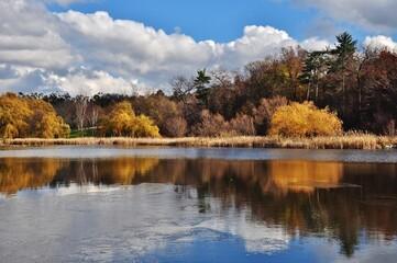 Autumn on Topham Pond, Toronto