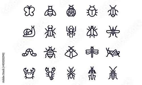 Fotografia Insect Line Icons Editable Stroke