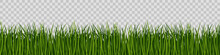 Green Grass On Transparent Background. Seamless Vector Pattern.