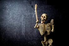 Human Skeleton Isolated On Black Background. Skeletons Pose