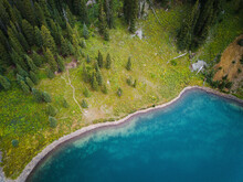 Aerial View Of Blue Lakes Surrounded With Pine Trees, Telluride, Colorado, United States Of America.