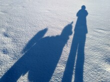 Shadows Of Man And Dog Poodle On The Snow For A Walk, Dog Is Man's Best Friend, Together Forever, Friendship Concept
