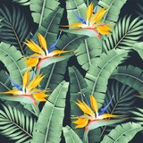Vector seamless pattern with palm leaf and flower