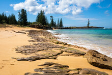 The Natural Environment Of The Sandy Beach With Dead Coral And Rocky Remains Contrasts With The Beautiful Turquoise Waters Of The Ocean Surrounding Norfolk Island And Its Famous Pine Trees.