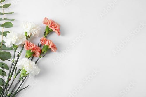 Fresh carnation flowers on white background - fototapety na wymiar